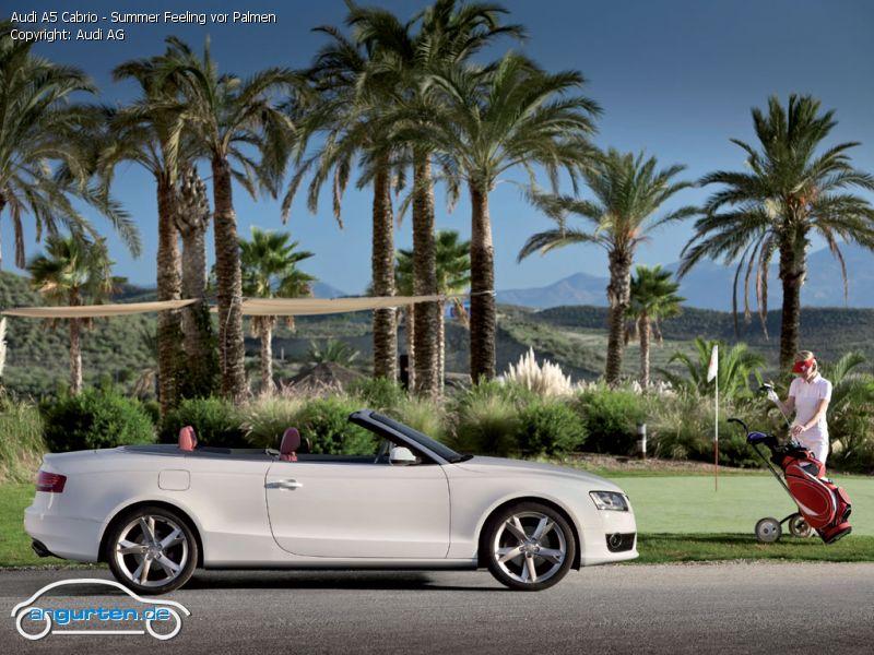 Foto Audi A5 Cabrio Summer Feeling Vor Palmen Bilder