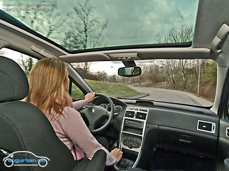 Foto Bild Peugeot 307 Glas Panoramadach Angurten De